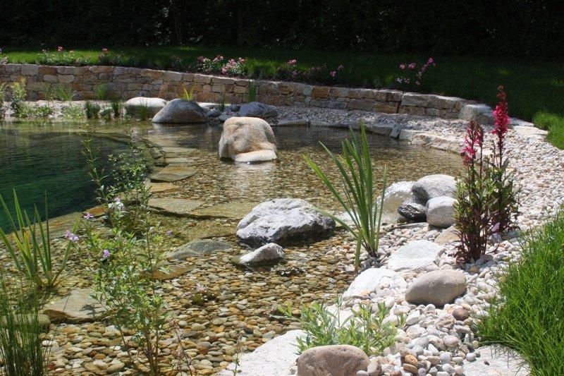 Etwas Neues genug Schwimmteich oder Swimmingpool | biokontakte.com @VQ_27